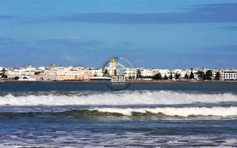 more | L'Immobilière d'Essaouira | L'Immobilière d'Essaouira
