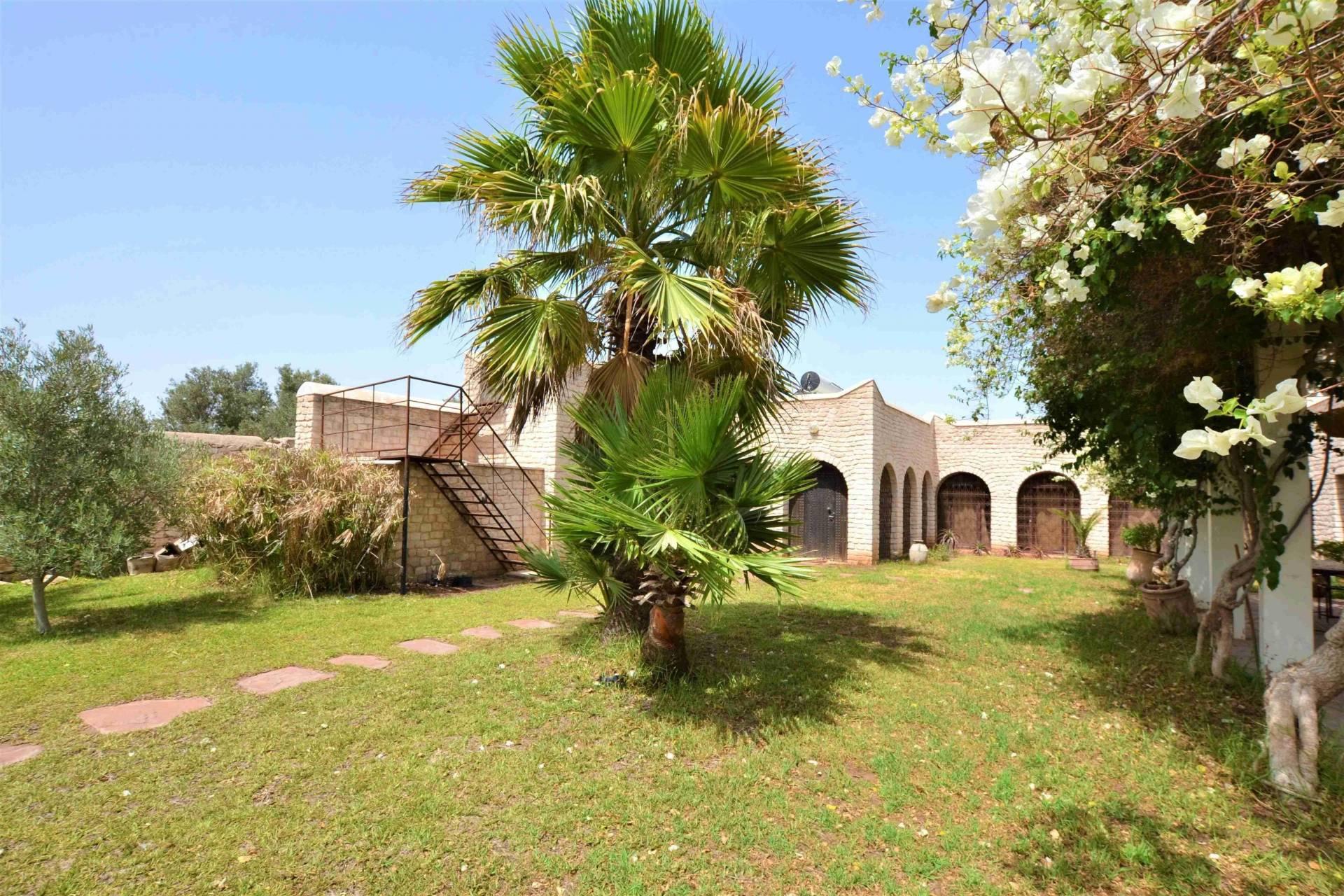 Location - Maison de campagne - 150 m² - Campagne - 550 € - Essaouira - 9251